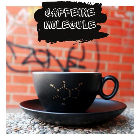 salica s molekulom kave
